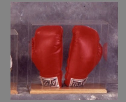 Double Boxing Glove Display Case Sports Display